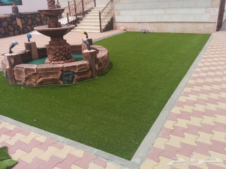 عشب صناعي ملاعب وحدائق  جملة